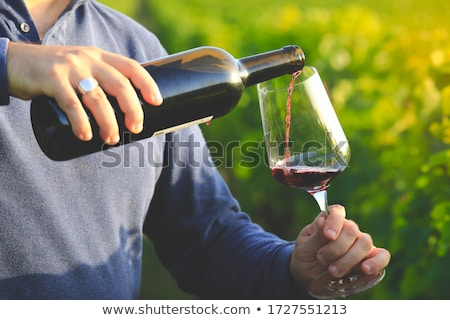 bottle of red wine and hands of a man Stock photo © Giulio_Fornasar