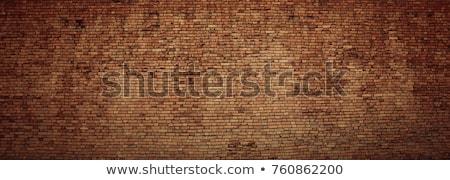 твердый деревенский красный кирпича стены поверхность Сток-фото © stevanovicigor