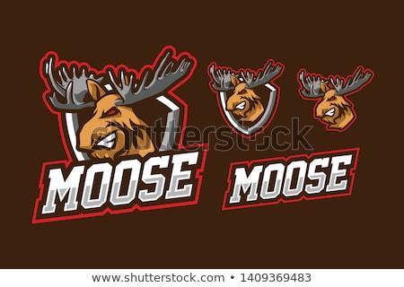 Vettore Moose mascotte divertente divertimento cervo Foto d'archivio © Galyna