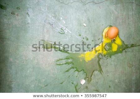 uovo · shell · isolato · bianco · fiore · alimentare - foto d'archivio © bluering