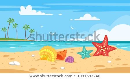Summer sea tropical shell background, vector illustration Stock photo © carodi