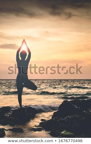 Nő jóga hajnal illusztráció sport természet Stock fotó © adrenalina