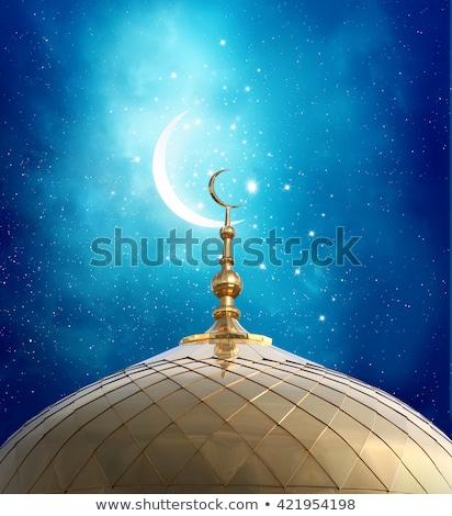 мечети силуэта ночное небо звездой Сток-фото © SArts