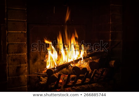 Old fireplace with logs Stock photo © backyardproductions