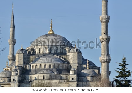 Isztambul · egy · Törökország · fa · épület · építkezés - stock fotó © vlad_star