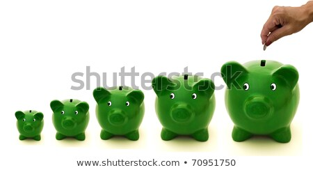 Female hand placing coin in piggy bank Stock photo © IS2