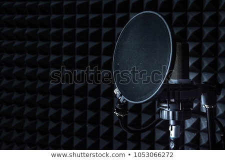 Detail of Acoustic Foam in Recording Studio Stock photo © Kayco