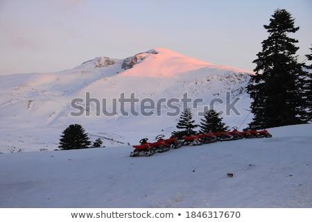 зимние · виды · спорта · лыжных · сноуборд · горные · пейзаж · лыжник - Сток-фото © Leo_Edition