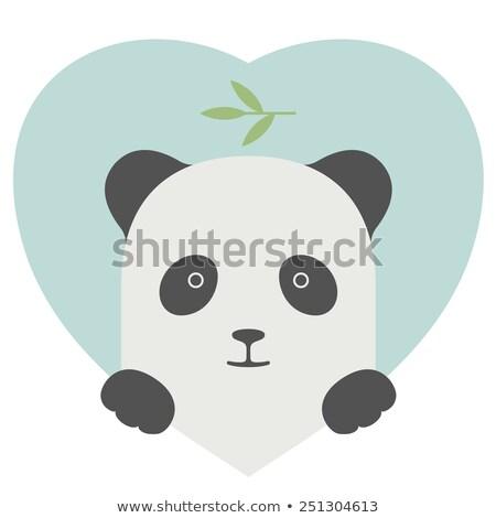 állat szett portré panda szeretet szív Stock fotó © FoxysGraphic