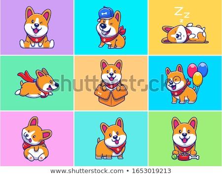 Cartoon dog a baseball player isolated Stock photo © tiKkraf69