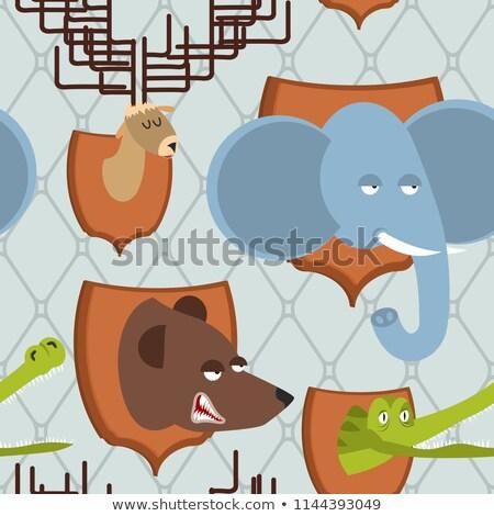 Cabeça animal caçador troféu elefante Foto stock © popaukropa