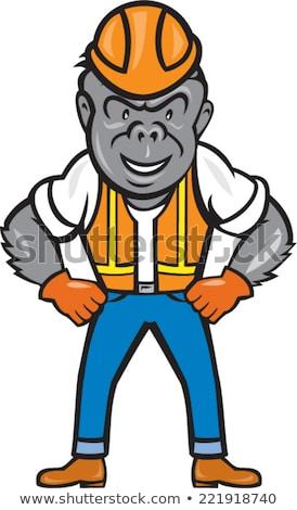 Cartoon colère travailleur de la construction gorille regarder casque Photo stock © cthoman