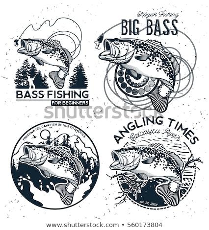 Balık atlamak su vektör simge iş Stok fotoğraf © blaskorizov