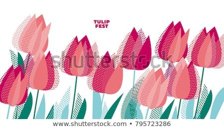 落葉性の · ツリー · フル · 咲く · ソーサー - ストックフォト © neirfy