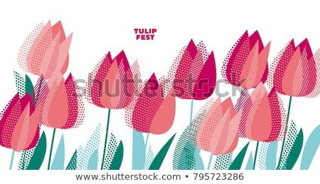 Flores de primavera Holanda jardín colorido primavera azul Foto stock © neirfy
