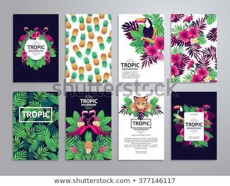 Gepárd jegyzet sablon illusztráció textúra háttér Stock fotó © bluering