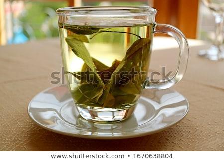 мат листьев чай фон зеленый пить Сток-фото © grafvision