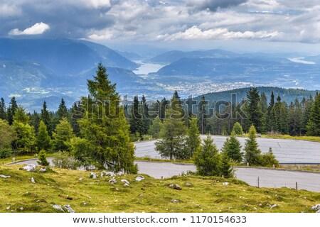 Kilátás alpesi út Ausztria végső parkolás Stock fotó © borisb17