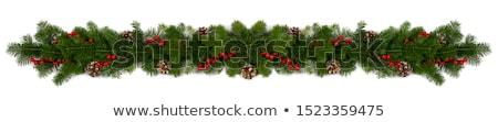 Navidad marco abeto blanco espacio Foto stock © galitskaya