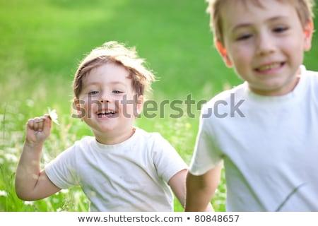 мужчины · ребенка · Daisy · области · ребенка · трава - Сток-фото © shamtor