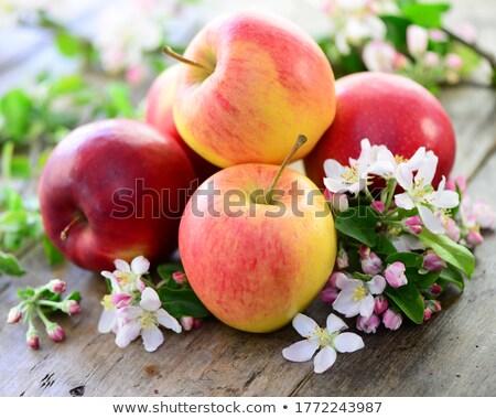 rode · appel · witte · tabel · bloem · textuur · voedsel - stockfoto © jamesS