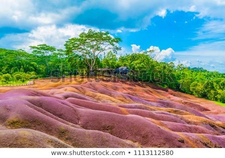 земле Маврикий острове Африка лес природы Сток-фото © AndreyPopov
