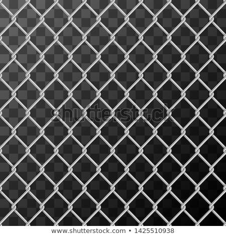 現実的な 金属 チェーン リンク フェンス ストックフォト © evgeny89