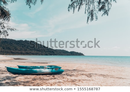 Canoe on the Beach stock photo © mackflix