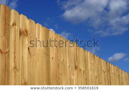 wood fence perspective Stock photo © bobkeenan