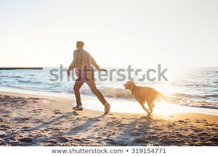 Family playing with dog on the beach stock photo © epstock