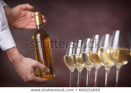 De · ober · wijn · champagne · glas · fles - stockfoto © photography33