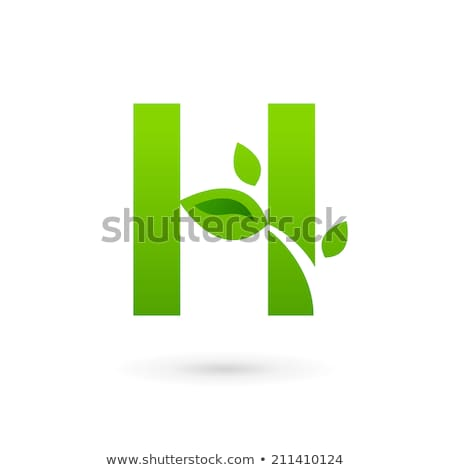 Glossy Icons for letter H stock photo © cidepix