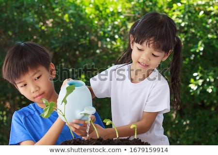 Children watering flowers Stock photo © photography33