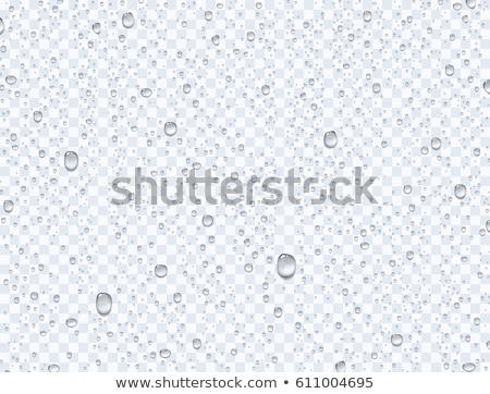 Drop Of Water Stock photo © idesign