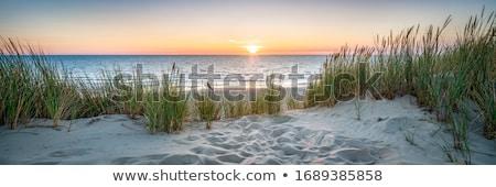 grande · duna · forte · vento · noite · luz - foto stock © zittto
