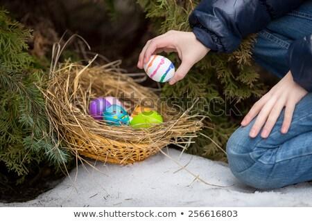 Coloré œufs de Pâques jardin fleur nature neige Photo stock © franky242