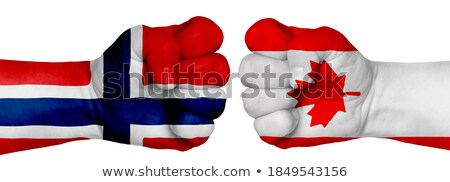 Fist painted in colors of norway flag Stock photo © vepar5