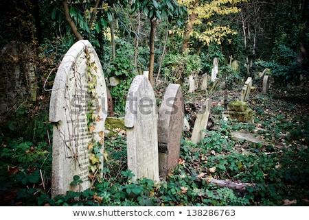 Highgate Cemetery in London Stock photo © chrisdorney