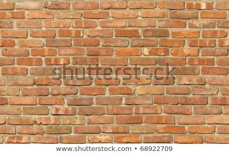 Weathered Brick Wall. Seamless Tileable Texture. Stock photo © tashatuvango
