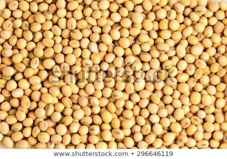 soy bean background Stock photo © FOKA