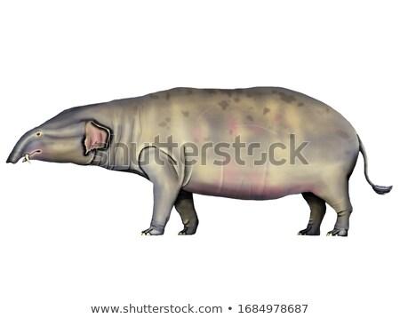 Prehistoric elephant Stock photo © FOTOYOU