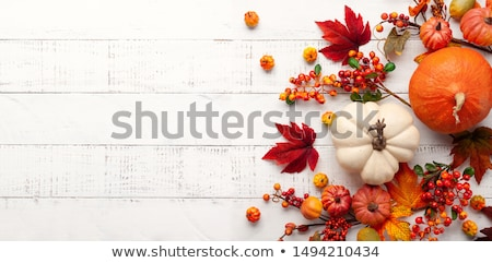 fall leaves and pumpkins on wood background stock photo © beholdereye