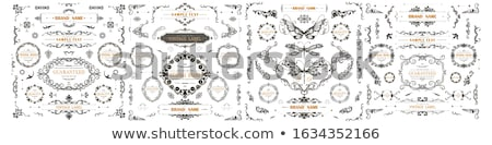 Flourish motif with place for your text Stock photo © morrmota