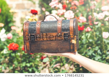 Woman holding a locked antique chest in her hands Stock photo © deandrobot