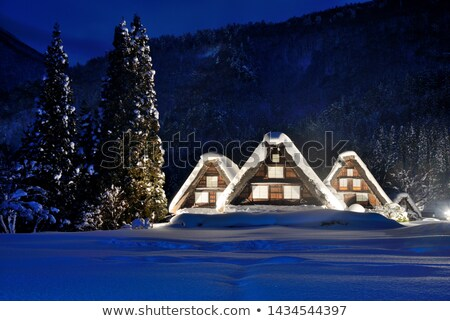 Nevadas casa mundo nieve invierno noche Foto stock © vichie81