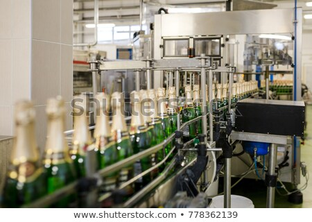 empty wine bottles at shop or winery factory stock photo © meinzahn