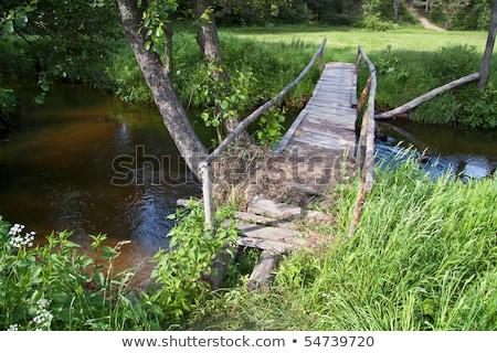 старые пешеходный мост высокий древесины морем Сток-фото © olandsfokus