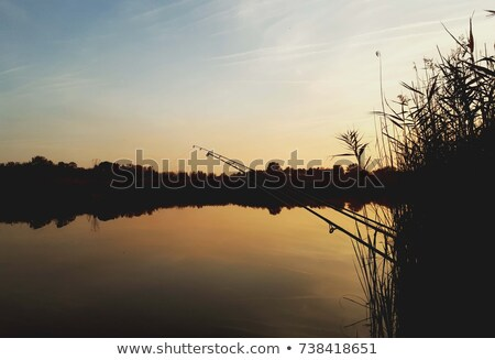 Fishing rod in the sunset at the lake. Stock photo © gabor_galovtsik