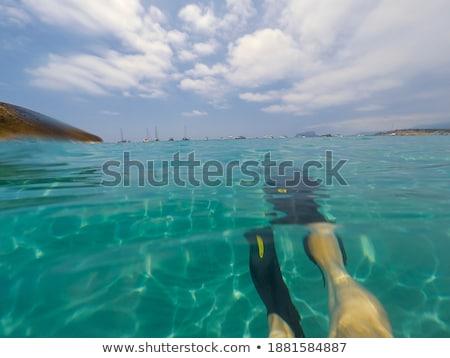 alga · praia · naturalismo · textura · fundo · areia - foto stock © lunamarina