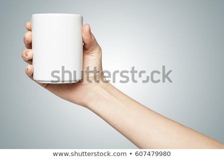 empresária · mãos · isolado · caucasiano - foto stock © dgilder
